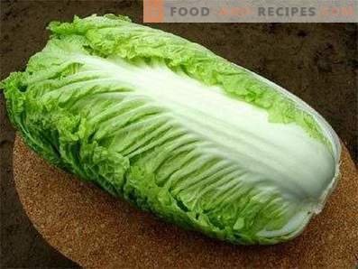 Beijing cabbage: the benefits and harm