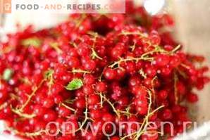 Red currant compote for the winter