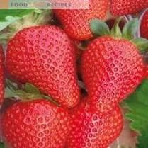 Strawberry summer. Top news of the season