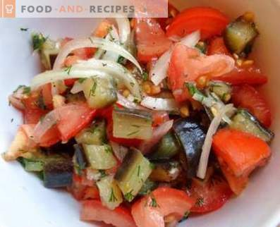Salads with eggplants and tomatoes