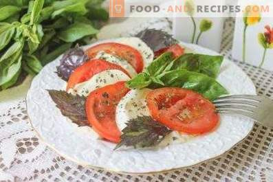 Salads with mozzarella and tomatoes