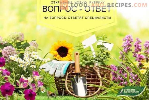 """""""Question-answer"""" - a new rubric about fertilizers of the Buysky plant"""