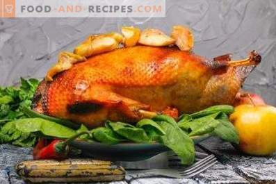 Goose baked in the oven with apples