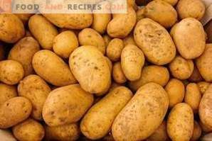 Potato calories