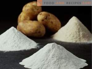 Modified starch: harm and use