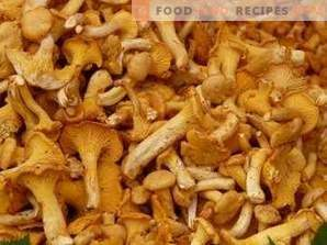 How to freeze chanterelles for the winter