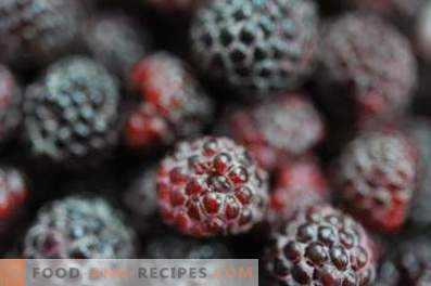 Blackberry: useful properties and contraindications