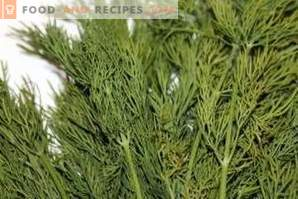 How to store dill