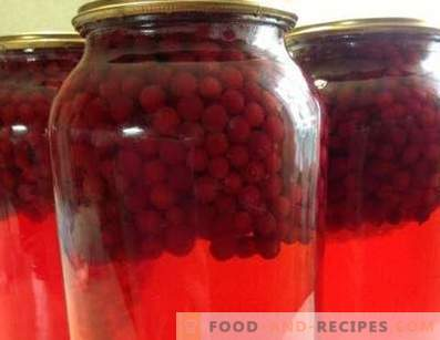 Lingonberry Compote for the Winter