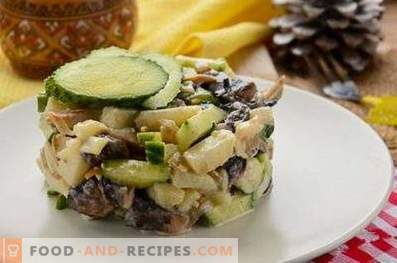Salads with fried champignons