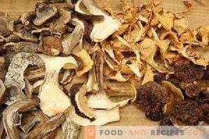 How to dry mushrooms