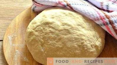 Dough on sour milk for patties