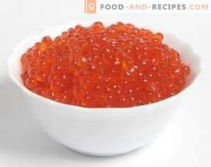 Caviar rouge: avantages et inconvénients