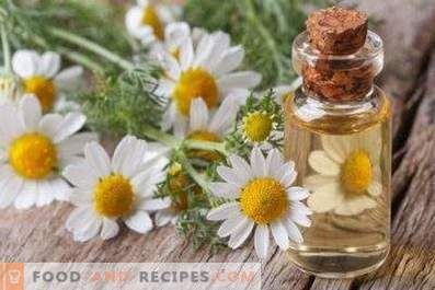Chamomile Oil: Properties and Applications