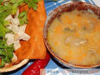 Canned mackerel soup in a slow cooker