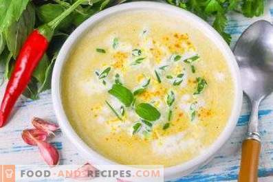 Corn puree soup
