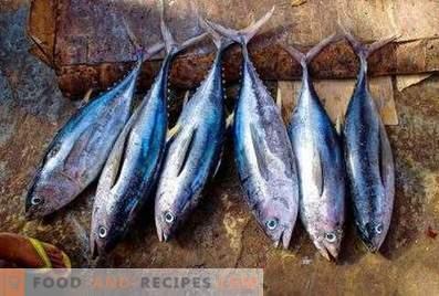 Tuna: the benefits and harm
