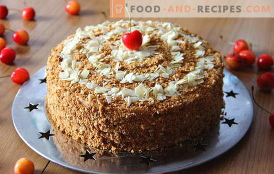Honey cake with condensed milk - a dessert for any occasion. How to bake a delicious honey cake with condensed milk: recipes for beginners
