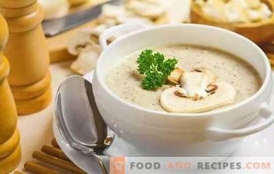 Fragrant champignon soups: step-by-step recipes. Prepare a simple filling and European cream soup of champignons (step by step)
