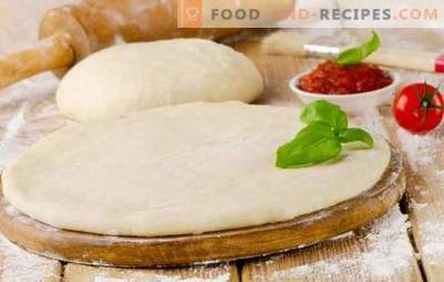 Pizza dough with milk is a tasty basis for a tasty dish. Cooking a variety of pizza dough with milk: lush, soft, crunchy