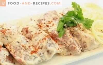 Kebab marinated in mayonnaise - it will definitely be juicy! How to pickle shashlik in mayonnaise with onions, ketchup, lemon, oriental