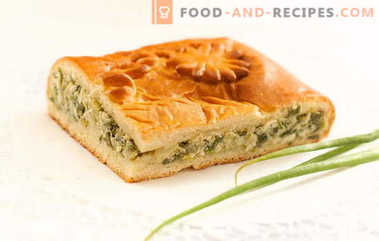 Green onion pie on yogurt - delicious homemade cakes. Recipes for pies with green onions on yogurt in the oven and multicooker