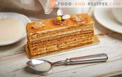 How to easily cook a delicious honey cake with condensed milk. Classic and original recipes for honey cakes with condensed milk