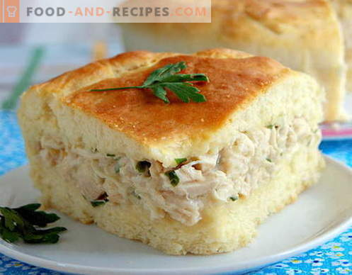 Chicken Pie - the best recipes. How to properly and tasty cook a chicken pie.