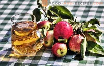 Making homemade apple cider - natural product! How to prepare raw materials for apple cider at home