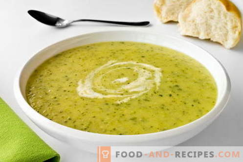 Zucchini soup - the best recipes. How to properly and tasty cook soups from zucchini.