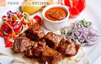 Skewers in a multicooker - recipes and the best ideas! Methods of cooking kebabs in a slow cooker, recipes from meat, poultry, fish