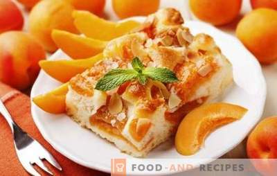 Pie with apricots from Julia Vysotskaya is a masterpiece! Recipes famous apricot pie from Vysotsky and its modifications