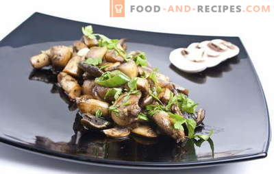 Recipe for fried champignons. How to fry champignons: with or without onions - proper preparation, processing and cooking