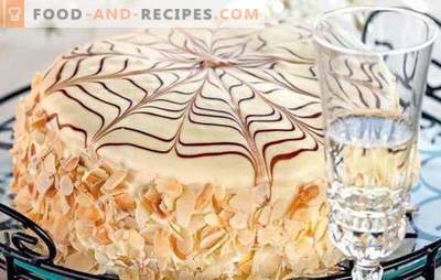 "Cake ""Spider"" - the original design of homemade dessert. Sophisticated and simple recipes of the gossamer cake"