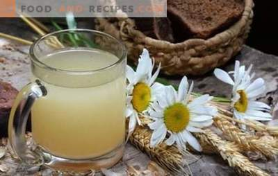 Oatmeal kvass - gives freshness, vigor, reduces weight! Kvass from oats at home: the benefits and harm to the body