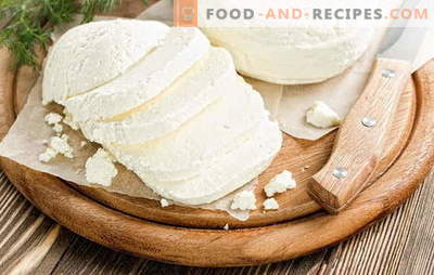 Adyghe cheese at home: delicious under any name! Recipes for homemade Adygei cheese