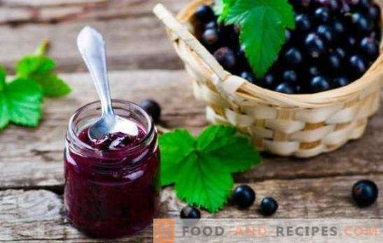 Black currant jelly is a pantry of health. How to cook a tasty and healthy black currant jelly with citrus, gooseberry, raspberry