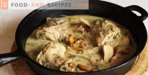 Rabbit in a slow cooker - the best recipes. How to properly and tasty cook rabbit in a slow cooker.
