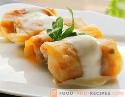 Cabbage rolls with meat are the best recipes. How to properly and tasty cooked cabbage rolls with meat.
