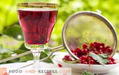 Red currant wine: the main stages of making fruit wines. Recipes for homemade red currant wines