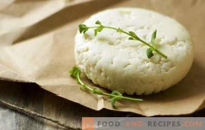 How to make goat cheese at home: simple recipes. How to make goat cheese: recommendations