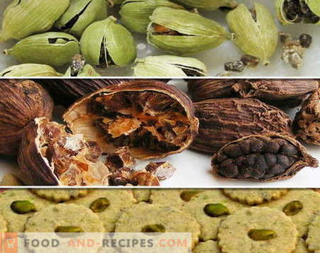 Cardamom - description, properties, use in cooking. Recipes with cardamom.