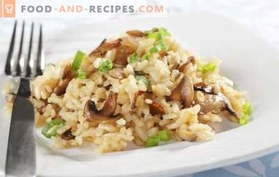 Risotto in a slow cooker - a dish from Italy. Risotto recipes in a multicooker with mushrooms, chicken, vegetables, bacon