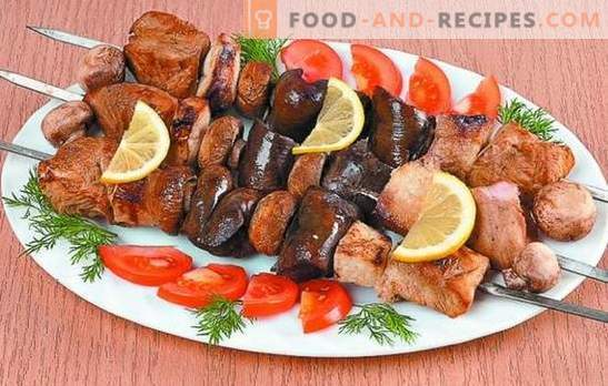 Turkey kebab: recipes for tender meat. Secrets of the marinade for turkey kebabs: spicy, quick, kefir, wine