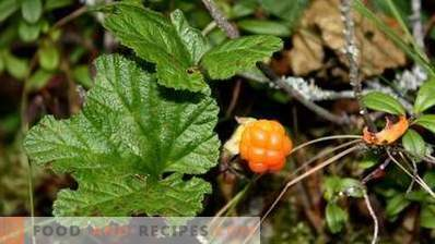 How to store cloudberries