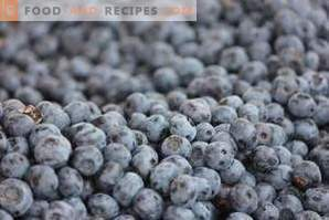 What makes blueberries different from blueberries