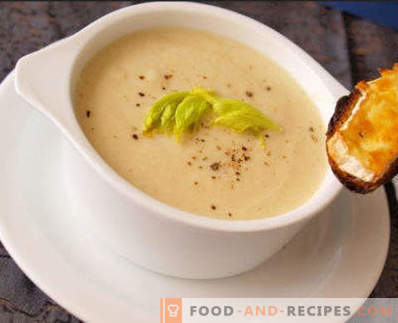 Turkey Soup Puree