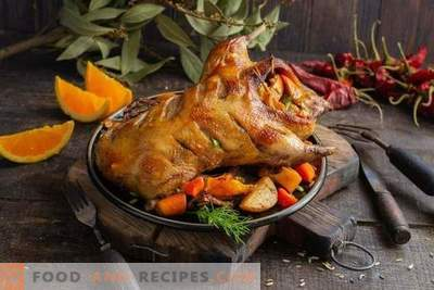 Juicy duck with oranges in French