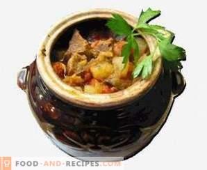 Chanahi in pots