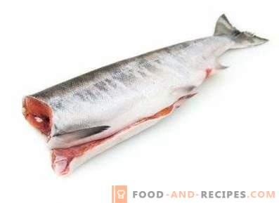 Chum salmon: benefit and harm